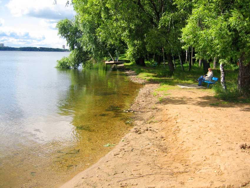 Берег озера Сенеж