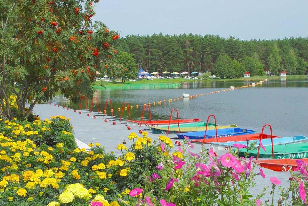 Санаторий и озеро окружены